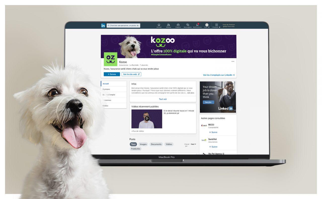 kozoo-linkedin-reseau-sociaux-communication-wala-studio-graphique